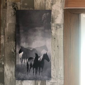2 horse canvases!